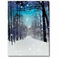 Courtside Market Winter Wonderland 20-Inch x 16-Inch Canvas Wall Art