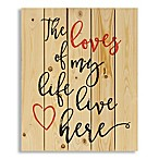 "Designs Direct ""The Love of My Life"" 18-Inch x 22-Inch Pallet Wood Wall Art"