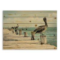 Designs Direct Perched Pelican 30-Inch x 21-Inch Pallet Wood Wall Art