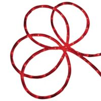 24-Foot LED Indoor/Outdoor Christmas Rope Lights in Red