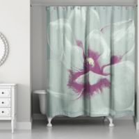 Designs Direct Graphic Floral II Shower Curtain in Teal