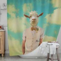 KESS InHouse® Passenger 6F Shower Curtain