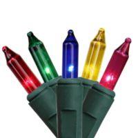 Sienna 45.75-Foot 150-Light Mini String Lights in Multi-Color