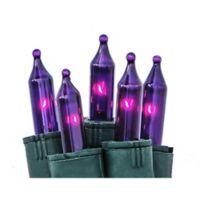 Bethlehem Lighting 50-Light Mini Light Set in Purple