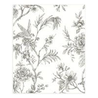 A-Street Prints Jessamine Floral Trail Wallpaper in Grey