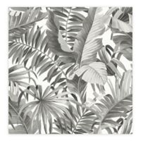 Alfresco Palm Leaf Wallpaper in Black