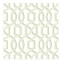 A-Street Prints Quantum Trellis Wallpaper in Green