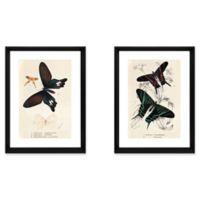 StyleCraft Butterflies Wall Art (Set of 2)