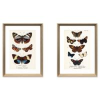 StyleCraft Multiple Butterfiles Wall Art (Set of 2)
