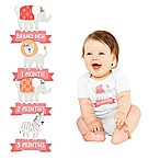 Pearhead® 13-Pack Girl's 1st Year Belly Stickers
