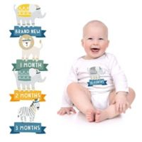 Pearhead® 13-Pack Boy's 1st Year Belly Stickers