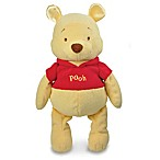 Disney Baby® Winnie the Pooh Floppy Favorite Plush Toy