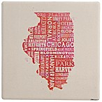 Thirstystone® Pink Illinois Typography Single Coaster