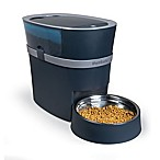 PetSafe® 12-Portion Automatic Cat & Dog Feeder in Dark Blue