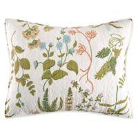C&F Enterprises, Inc. Anessa Standard Pillow Sham in Green