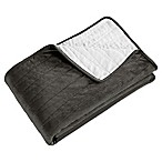 Brielle Velvet Throw Blanket in Charcoal