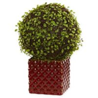 Nearly Natural 13-Inch Mohlenbechia Ball Artifical Plant with Brown Planter
