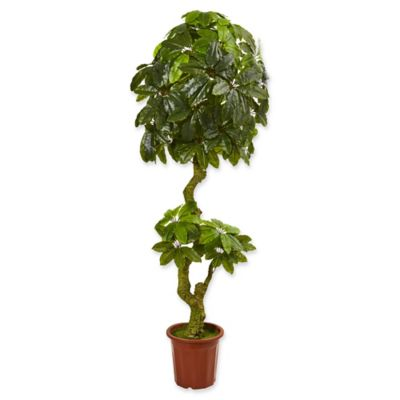 Buy Artificial Indoor Trees from Bed Bath & Beyond