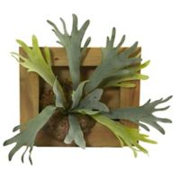 Nearly Natural 13-Inch Staghorn Artificial Plant with Wood Hanging Frame
