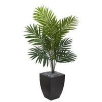 Nearly Natural Kentia Palm Tree with Planter in Black