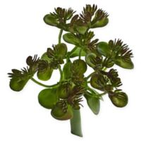 Nearly Natural 5.75-Inch Sedum Succulent Plants (Set of 12)