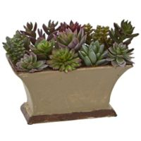 Nearly Natural 6.5-Inch Mixed Succulent Artificial Plant in Green