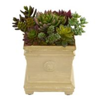 Nearly Natural 7.6-Inch Mixed Succulent Artificial Plant in Green
