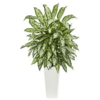 Nearly Natural 43-Inch Silver Queen Plant in White Tower Vase