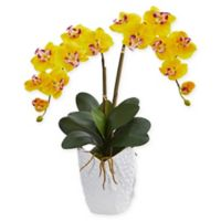 Nearly Natural 24-Inch Artificial Orchid Arrangement in Yellow