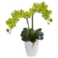 Nearly Natural 24-Inch Artificial Orchid Arrangement in Green