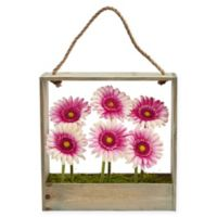 Nearly Natural 12-Inch Light Pink Daisy Artificial Arrangement with Wooden Frame
