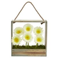 Nearly Natural 12-Inch White Daisy Artificial Arrangement with Wooden Frame