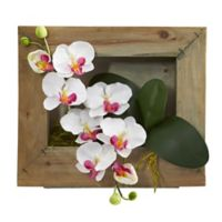 Nearly Natural 10-Inch Phalaenopsis Orchid Wall Mount Arrangement with Wood Frame in White