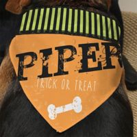 Happy Howl-oween Dog Bandana