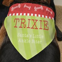 Santa's Helper Dog Bandana