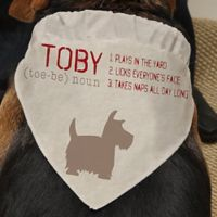 Definition of My Dog Pet Bandana