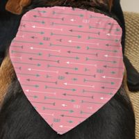 Modern Arrow Dog Bandana