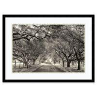 Amanti Art Canopy 30-Inch x 22-Inch Framed Wall Art