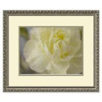 Amanti Art Rose Whisper 25-Inch x 21-Inch Framed Wall Art