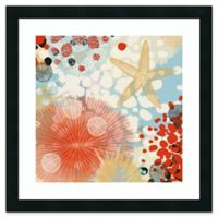 Amanti Art Exotic Sea Life II 22-Inch Square Framed Wall Art