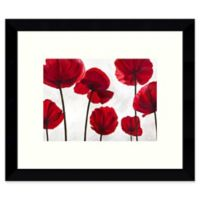 Amanti Art Red Friends (Poppies) 11-Inch x 9-Inch Framed Wall Art