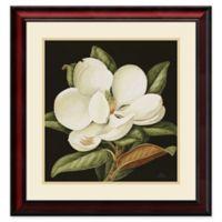 Amanti Magnolia 24.38-Inch x 25.38-Inch Grandiflora Framed Wall Art