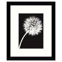 Amanti Art Dandelion Tilt 8.88-Inch x 10.88-Inch Framed Wall Art in Black