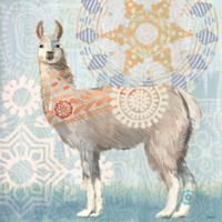Portfolio Arts Group Global Llama II 12-Inch Square Canvas Wall Art