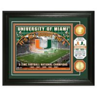 University of Miami Football Field Bronze Coin Photo Mint
