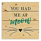 "Designs Direct ""You Had Me at Meow"" 14-Inch Square Pallet Wood Wall Art"