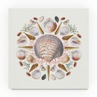 Trademark Fine Art Ocean Mandala I 14-Inch Square Canvas Art