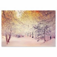 """Courtside Market """"Snowy Sunrise"""" 24-Inch x 36-Inch Canvas Wall Art"""