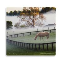 Thirstystone® Dolomite Kentucky Horse in the Mist Single Round Coaster