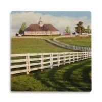 Thirstystone® Dolomite Winding Fence and Farm Single Round Coaster